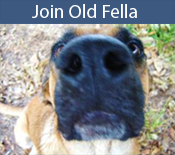 Join Old Fella